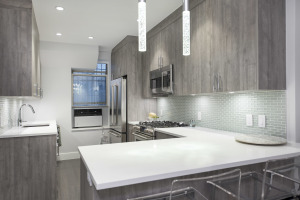 West 87th Street - Upper West Side - Full Remodel        Photo #7539