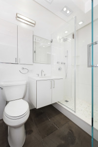 22 West 15th Street - Lower Manhattan - Full Remodel        Photo #2110